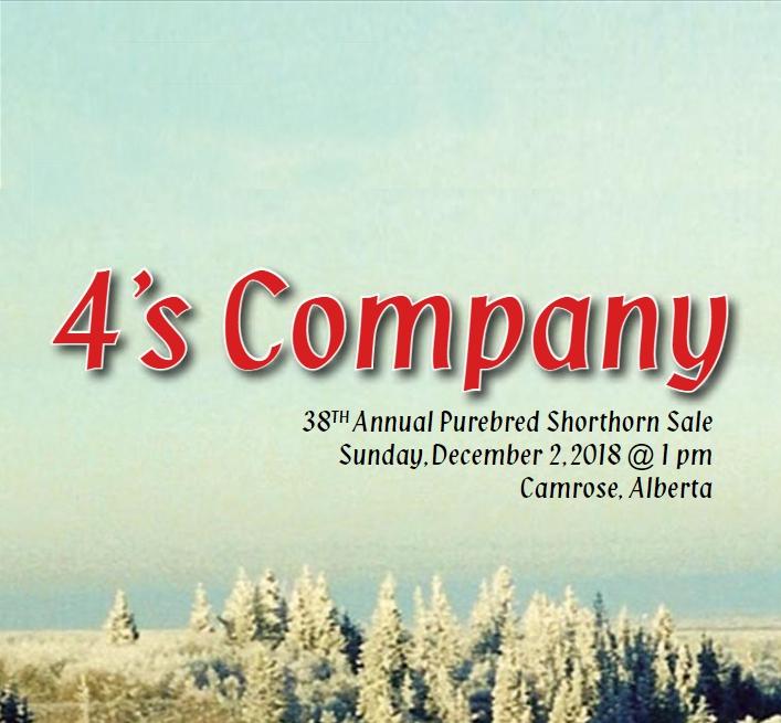 4s-company